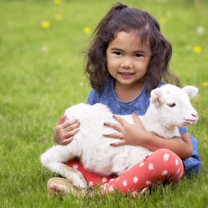 Little girl holding lamb