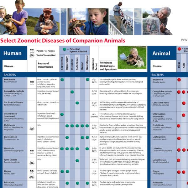 Select Zoonotic Diseases Companion Animals Wallchart